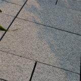 Les différents types de carrelage bon marché de granit ont flambé l'étage de granit