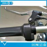 Bici elettrica dell'abbonato del motorino di piegatura urbana dell'uomo, bicicletta elettrica leggera con gli indicatori luminosi del LED