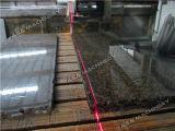 Graniet/Marmeren Zaag voor Scherpe Countertops van de Steen (HQ400/600)