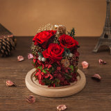 Fiore naturale della Rosa per il regalo del biglietto di S. Valentino