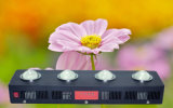 PFEILER Pflanze wachsen Lampe LED für medizinische Pflanzen