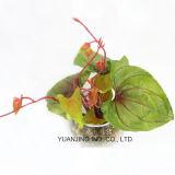Planta verde de las hojas artificiales con el crisol del vidrio de agua del Faux