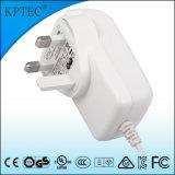 Enchufe estándar del adaptador de la CA con el pequeño producto 25With12V/2A del aparato electrodoméstico