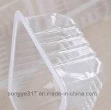 Belüftung-Blasen-Kuchen-Unterseiten-Kiste