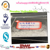 El anestésico local narcotiza el clorhidrato de procaína para releva el dolor 51-05-8
