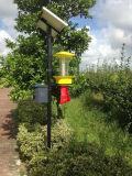 Lâmpada inseticida com vibração freqüente da energia solar