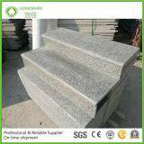 Le nostre proprie scale naturali G623/Rosa del granito della cava beta