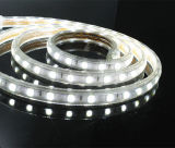 des 5050 super heller LED Streifen 60LEDs/M hohen Volt-