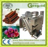 フルーツの革か機械を作る乾燥果物
