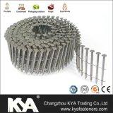 Chiodi galvanizzati della bobina per tetto, recintanti