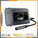 Medição fetal de ultra-som bovino Bestscan S6 Advanced Portable Ultrasonic Detector