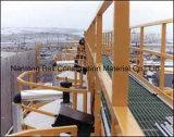 다른 Pultrusion 단면도를 사용하는 FRP 사다리와 플래트홈 제품