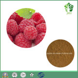 100%の自然なラズベリーのエキス、減量のためのラズベリーのケトン99%