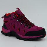 女性の防水靴をハイキングする屋外の履物のスポーツ