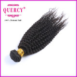 Extensão brasileira do cabelo de Remy do Virgin, cabelo humano da onda Kinky