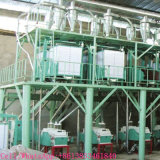 Tajikistan에 있는 중국 Best Quality Wheal Flour Mill Installed