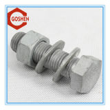 BACCANO ASTM Fastener Bolt & Nut con Highquality