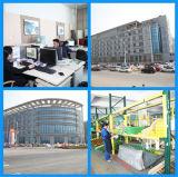 中国の大きい屋内運動場装置(YL-B019)
