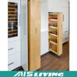 Europäische glatte Speicherschrank-Melamin-Fertigstellungs-Küche-Schrank-Möbel (AIS-K986)