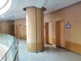 Плита стены винила с Antibacterial и предохранением от удара