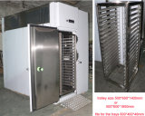 - 35c Blast Freezer für 1 Ton Fish Freezing