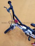 Велосипед Јужна Америка горячий продавая, цикл детей, Bicicleta Infantils