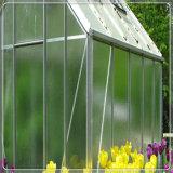Templado opaco difusa de vidrio para el invernadero de cristal Venlo