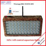 Luz usada del acuario del filón coralino 120W 165W LED para la distribución