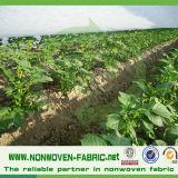 100%年のポリプロピレンの温室の陰の布の農業のテントファブリック