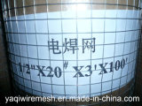 Qualität Low Price Welded Wire Mesh Supply durch Yaqi (Galvanized/PVC Coated)