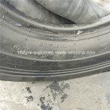 롤러 타이어 10.5/80-16 의 C-1 의 Bomag 상표, 9.5/65-15 매끄러운 타이어를 가진 타이어