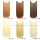 Extensions de trame de cheveu de cheveu bon marché de bonne qualité des prix de trame