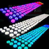 Luces de la Navidad del LED para el vector de cena de la Navidad