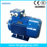 Ye3 0.75kw Triphasé AC Asynchronous Squirrel-Cage Induction Electric Motor