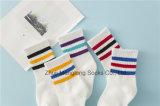 Симпатичный хлопок платья школы Socks оптовая продажа носок хлопка школы девушки популярная