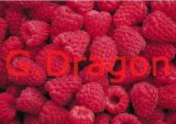 Niedriger gelber Pfirsich der Profit-Qualitäts-IQF (GD-IQF005)