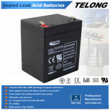 12V 5ah Sealed Lead Acid Battery voor Alarm System