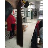 "cabelo humano desenhado 8 "" - 22 "" do volume do cabelo 10A dobro asiático"