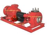 Thermoplastische Pumpen-horizontale thermoplastische Pumpe