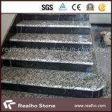 Punti di marmo classici dell'Italia Botticino/mattonelle delle scale