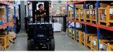 chariot élévateur électrique de 2016new 3-Wheel à vendre