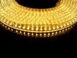 세륨 RoHS 최고 밝은 220V/127V SMD3014 LED 밧줄 빛 (SMD3014-120)