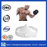 Het beste Verkopende Ruwe Steroid Testosteron Isocaproate van het Poeder