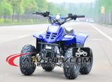 베스트셀러 2개의 치기 엔진 49cc ATV
