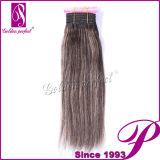 Cheveux humains supérieurs du Brésilien 100% de la vente en gros 100% Quallity 5A