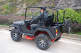 China Supplier Automatic 200cc Dune Buggy