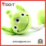 Giocattolo verde dell'animale domestico della peluche della corda di masticazione della sfera di addestramento del cane