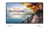 Bester Zoll LED des Preis-32 Zoll TFT LED Fernsehapparat-32 Zoll LED VGA-Monitor Fernsehapparat-55 Fernsehapparat-Monitor