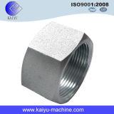 Accessorio per tubi dell'acciaio inossidabile del ribattino del dado di bullone