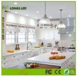 Dimmable schmälerte LED-NENNWERT Licht für Innenbeleuchtung mit E26 9W 12W 15W 18W 20W NENNWERT 20 PAR30 PAR38